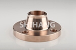 EEMUA 145 Section 3 weld neck flange (2)